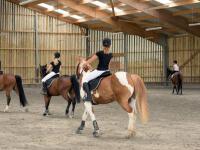 Manège chevaux intérieur